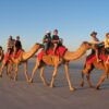 Paradise Valley Trip With Camel Ride in Agadir