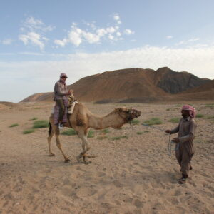 Camel Ride in Agadir