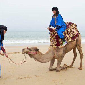 Taghazout Camel Ride