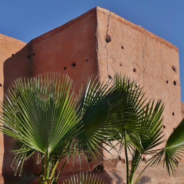 Marrakech Day Trip From Agadir