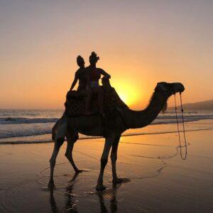 Agadir Kamelritt