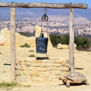 Agadir City Tour with Camel Ride and Lunch
