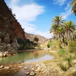 Sahara Desert & Atlas Mountains Day Trip