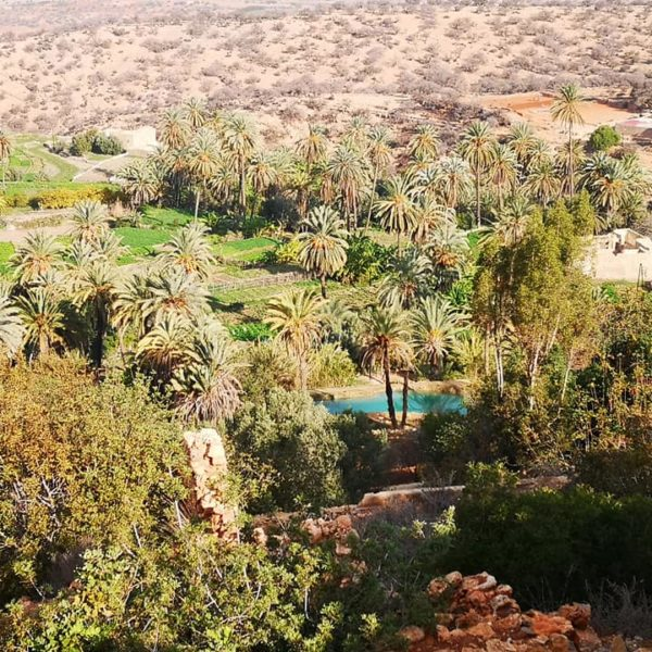 Sahara Desert & Atlas Mountains Day Trip