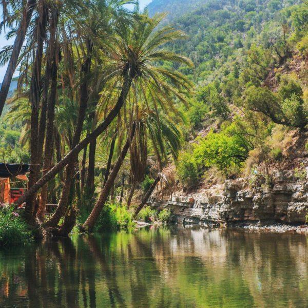 Excursion la vallée du paradis au depart d'agadir