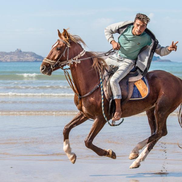 Essaouira Horse Ride