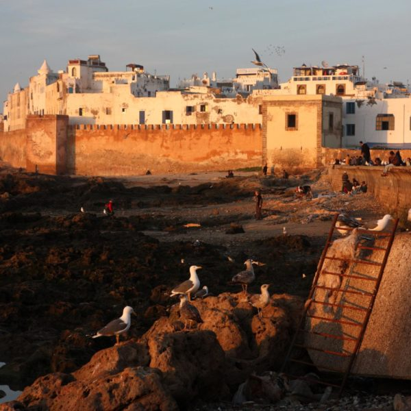 Essaouira day trip from Taghazout