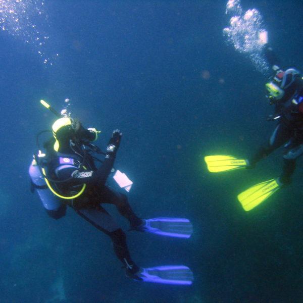 Best Diving Trip in Agadir