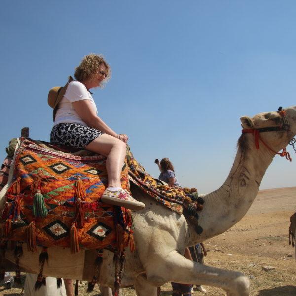Przejażdżka na wielbłądach w Agadirze