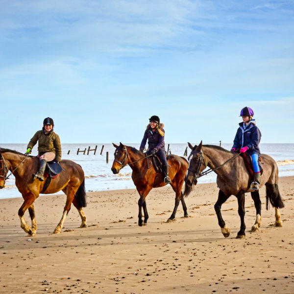 Horse ride in Taghazout