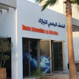 Meteorite Museum Trip From Agadir